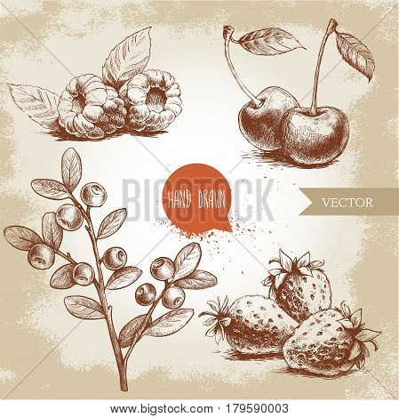 Hand drawn sketch style berries set. Raspberry with leafs strawberries cherry and blueberries branch. Healthy fruit and berry vector illustration.