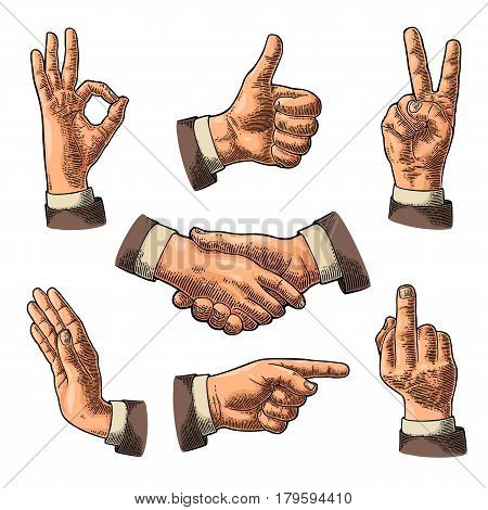 Male Hand sign. Like, Handshake, Ok, Stop, Middle finger up, Victory, Pointing gesture. Vector color vintage engraved illustration isolated white background