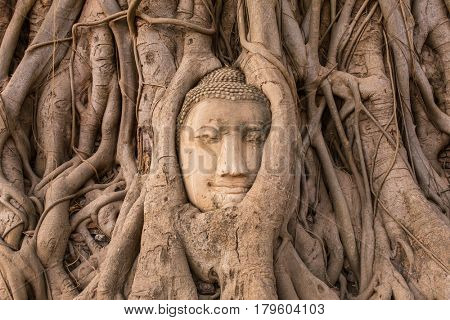 Buddha Head in Tree Roots in Wat Mahathat , Ayuthaya , Thailand