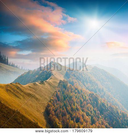 Carpathian Mountain Valley_7