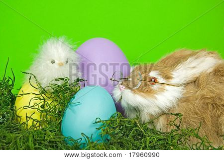 Easter Critters