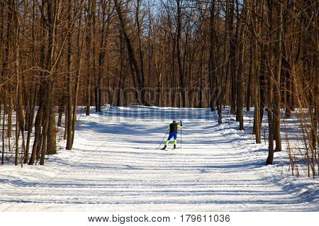 Lonely Sportsman Skiing In The Woods In Winter