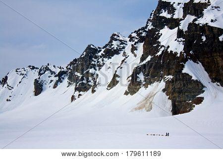 Dog Sledding With Mountains On Glacier