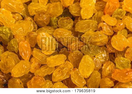 Organic dried golden raisins close up macro photo as background or raisins pattern