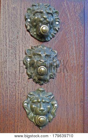 Ornamental Aged Brass Male Lion Head Doorbell