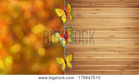 Colorful butterflies over blurred orange background and timber fence