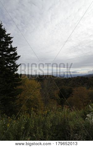 Great Smokey Mountain National Park Fall Colors Landscape
