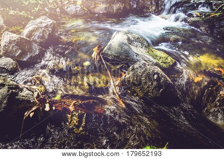 Wallpaper nature Waterfall stream. Water streams of natural forests. thailand Tropical zone