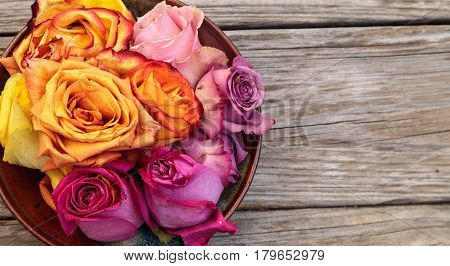 Rose Petals In A Bowl In The Colors Of A Sunset