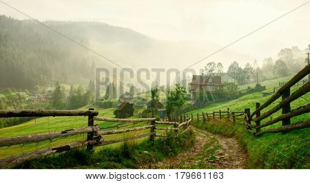 Country Road  at dawn,  Vorokhta,   Carpathian Mountains, Ukraine. Toned image
