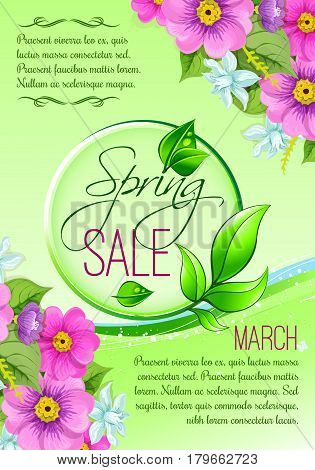 Spring Sale vector poster design for March springtime holiday promo shopping discount. Floral bunches of pink crocuses, blooming snowdrops and lily flowers blossoms on grass and leaves