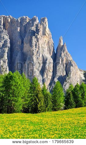 Beautiful mountain landscape in sunny spring day. Valle del Vajolet in Dolomites,Italien Alps