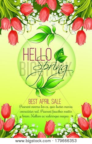 Hello Spring vector poster for April sale. Design of blooming springtime red tulips lily of valley flowers bunch or blossom bouquets for spring holiday shopping discount promo offer