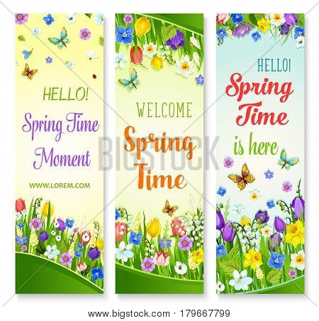 Hello Spring vector banners with flowers and greeting quotes of Welcome Spring Time. Floral design with butterflies and blooming springtime flowers on green grass meadow of crocuses and lily blossoms