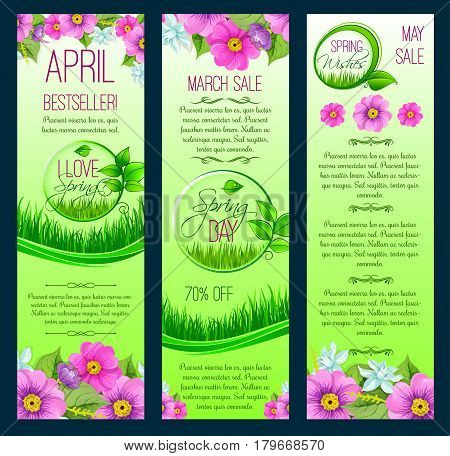 Spring sale and March shopping promo discount vector banners set. Floral design of springtime blooming flowers crocuses, daisy and daffodils or narcissus on green grass meadow field