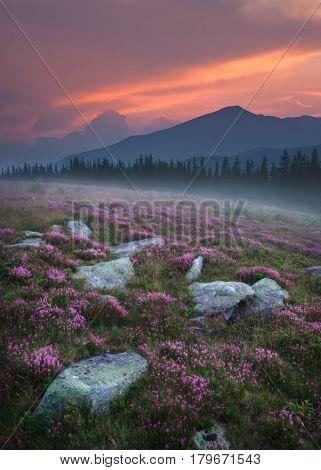 Professional landscape photo at idyllic sunset in Parang mountains Romania near the famous Transalpina road.