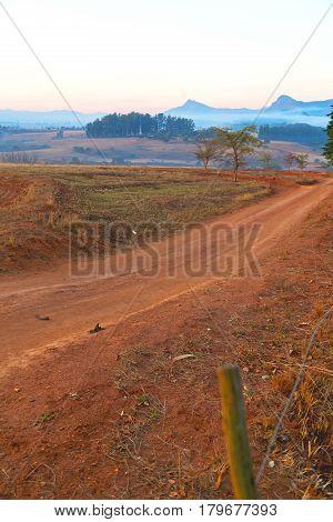 In Swaziland   Wildlife  Nature  Reserve