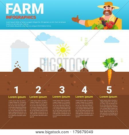 Farming Infographics Eco Friendly Organic Natural vegetable Growth Farm Production Banner With Copy Space Vector Illustration