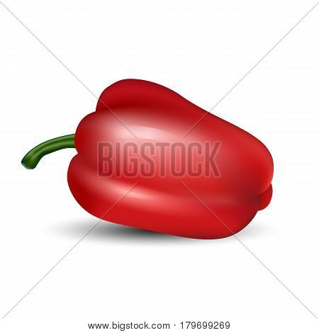 Isolated colored realistic whole red color paprika with shadow on white background. Bulgarian pepper.