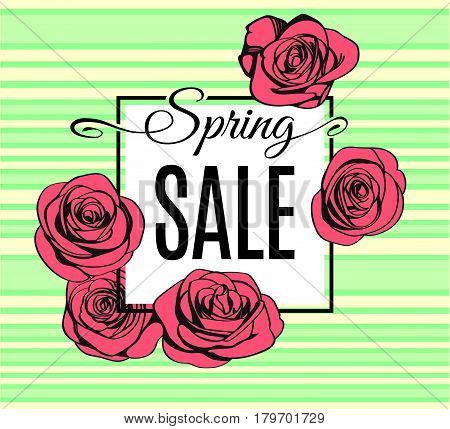 Spring Sale banner template with black frame on light tender stripped green background and with pink outline roses. Shop market poster for your spring design. Vector illustration