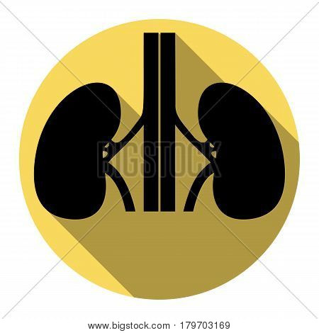 Human kiddneys sign. Vector. Flat black icon with flat shadow on royal yellow circle with white background. Isolated.