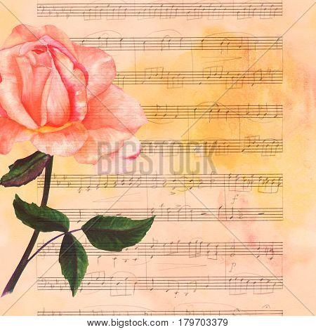 A watercolor drawing of a tender pink rose flower, hand painted in the style of vintage botanical art on toned paper, with faded sheet music and a place for text