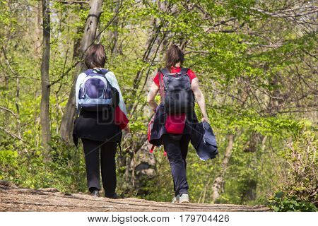 Two women going for a walk in a forest