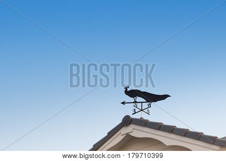 Weathervane with peacock above an arrow and the four cardinal points North East West South