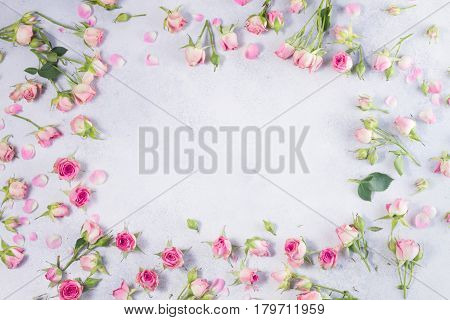 Pink and white rose flowers frame with copy space on gray background