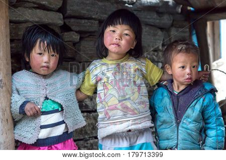 Portrait of little Nepalese Children Group in remote Himalaya Village embracing each other and looking directly into Camera. Nepal, Solo Khumbu area, November 8, 2016