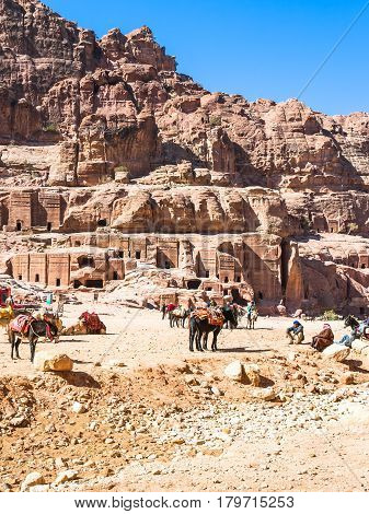 Bedouin Camp In Ancient Petra Town