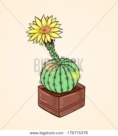 Blooming yellow cactus in a flowerpot. Hand drawn vector illustration.