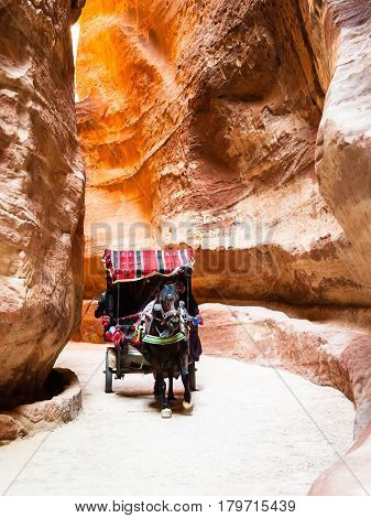 Bedouin Horse Cart In Al Siq Passage To Petra Town