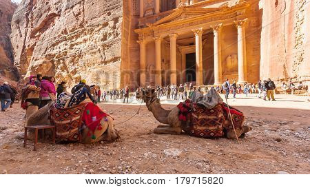 Camels And People Near Al-khazneh Temple In Petra