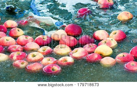 Apples Trapped In A Frozen Water