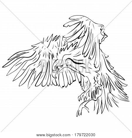 Ink crow Black crow with the wings. Raven illustration. Vector illustration