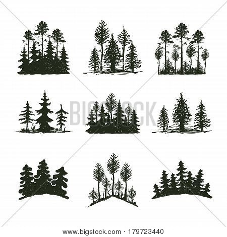 Tree outdoor travel black silhouette logo coniferous natural badge, tops pine spruce branch cedar and plant leaf abstract stem drawing vector illustration. Panorama scene horizon decoration.
