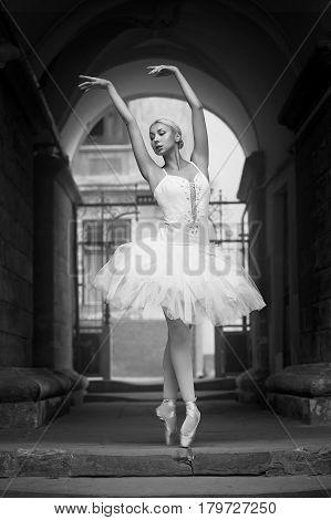 Ballet virtuoso. Soft focus monochrome shot of a dancing ballerina outdoors
