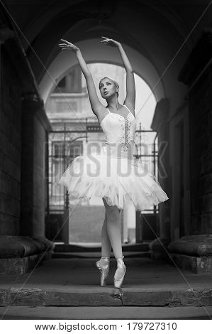 Dreaming big. Monochrome soft focus shot of a graceful ballerina posing looking away dreamily