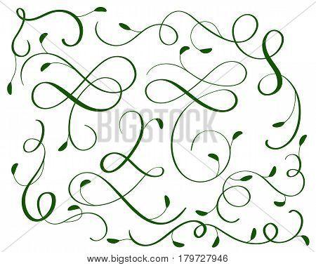 green set of vintage flourish decorative art calligraphy whorls for design. Vector illustration EPS10.