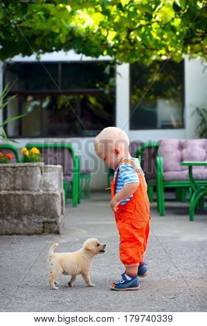 A Boy And A Stray Puppy. Little Boy Met A Lost Puppy