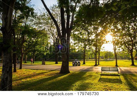 Park Bench Sunset Yellow Light Beam
