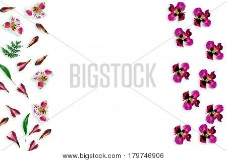 Colorful bright flowers Alstroemeria on a white background. pansy