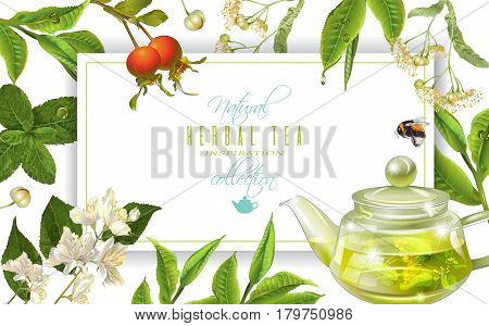 Vector herbal tea frame with tea pot , linden, jasmine, rose hip and bee on white. Background design for packaging, tea shop, drink menu, homeopathy and health care products. With place for text.