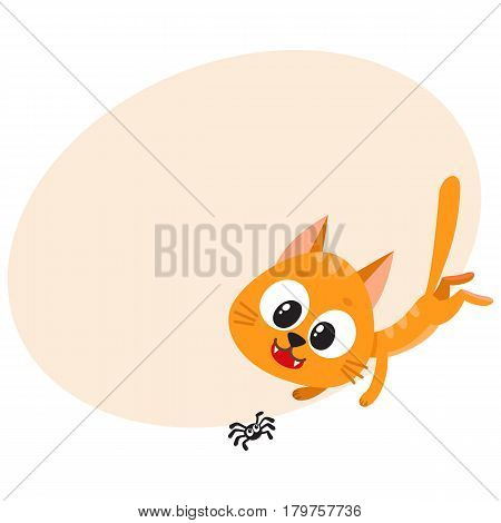 Cute and funny red cat character chasing, hunting, playing with little spider, cartoon vector illustration with place for text. Cute and funny red cat character playing with little spider