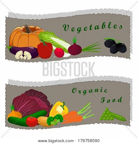 Abstract vector illustration logo for ripe vegetables red pepper yellow pumpkin tomato green cucumber carrot brown potato broccoli mushroom peas olive cabbage onion zucchini radish eggplant cut sliced