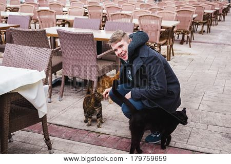 Smiling young man stroking the stray cats.