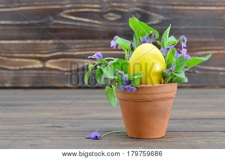 Easter card with Easter egg and violet flowers