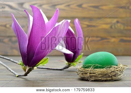 Easter card with green Easter egg in the nest and magnolia flowers
