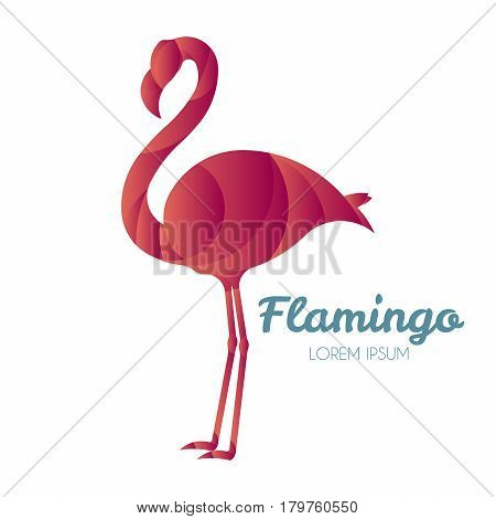 Vector illustration of flamingo logo design template made with golden ratio principles.